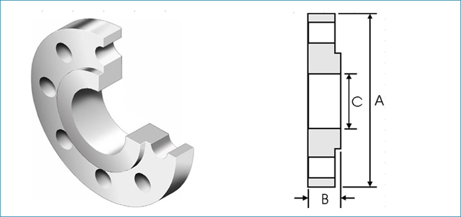 Stainless Steel BS 10 Flanges