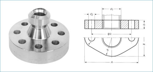 Stainless Steel Flangeolet Flanges